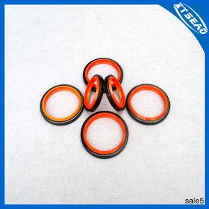 Dkb/Lbh Type Wiper Seal Ring Kits NBR für Mechanical Dust
