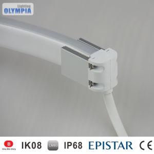 24V LED tira flexible de neón luz