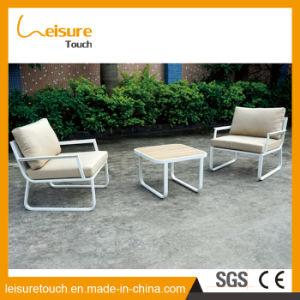 Gebildet China-in der im Freien Patio-Möbel-Liebes-Sitzhölzernen Plastiktabelle und im Stuhl-Sofa