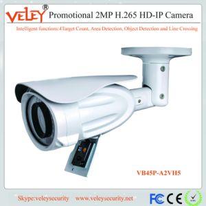 Los proveedores de Webcam Cámara CCTV Cámaras IP seguridad de protección para el hogar