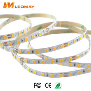 Bandbeleuchtung der Qualitäts 5mm LED mit CER RoHS CETIFICATE