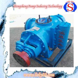 La pompe à huile diesel type à double vis
