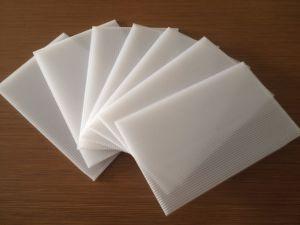 Branco e colorido oco PP Coroplast Sheet