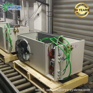 10 años de garantía de la planta de procesamiento de pescado Venta de unidades de un cuarto frío.