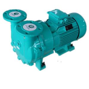 2BV5 161 Líquido/Anel de água da bomba de vácuo para máquinas de plástico