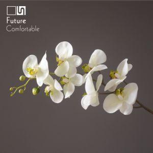 蝶蘭の偽造品の花、装飾の花、ホーム装飾、実質の接触8ヘッド蝶蘭のための白い蝶Fower