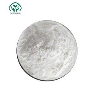 Los aditivos alimentarios alimentos de alta calidad de dióxido de titanio de grado Nº CAS: 13463-67-7