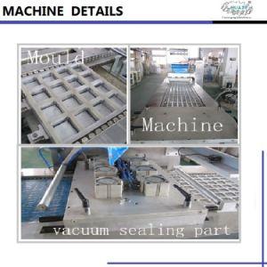 Macchina imballatrice di Thermoforming del programma profondo automatico di vuoto per i panini