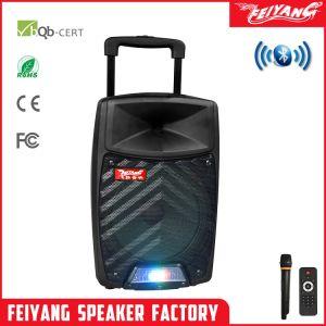 12polegadas Temeisheng Feiyang Bt-Connected Plástico Carrinho Portátil de alto-falante com SD/TF Card SL12-11