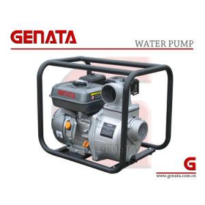 Genata (GTWP80-30G)の浸水許容の水ポンプ