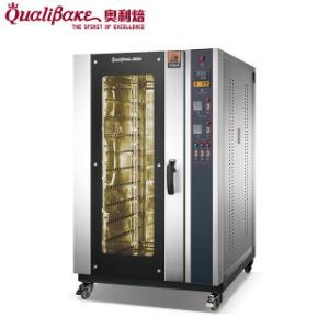 Форма для выпечки электрического оборудования горячего воздуха Конвекционная печь с системой подачи пара высокого качества с конкурентоспособной цене (QH-10D)