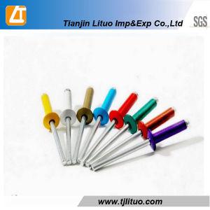 DIN7337 좋은 가격 색깔 인쇄된 헤드 장님 리베트