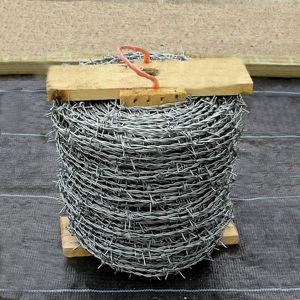 Galvanizado Alambrada Fabricante (EBW-15)