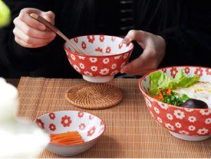 Padellame multicolore della ciotola di riso di stile giapponese