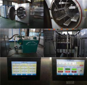 De industriële VacuümDroger van de Microgolf