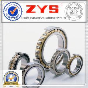 Zys rolamentos de roletes cilíndricos de baixa fricção N1016K NN3016K