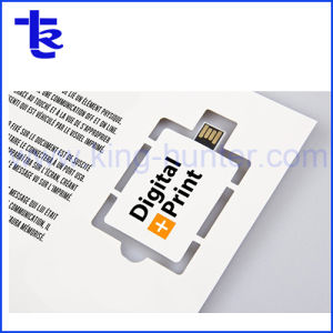 Papel colorido Webke USB Flash Drive USB