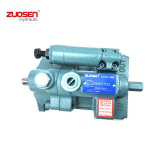 El émbolo Hhpc la bomba P22-A1-F-R-01, P08/P16/P22/P36/P46/P70/P100 Hhpc Series con mejor precio