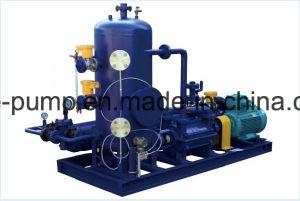 De Pomp van wortels met het VacuümSysteem van de Pomp van de Ring van het Water (Vloeistof)
