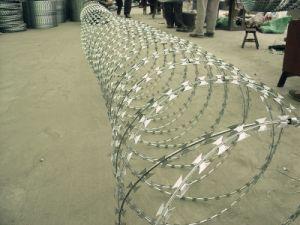 Proteção de segurança da Barragem do fio navalha-acordeão Btp-22