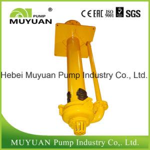 Processamento de minerais com revestimento metálico Vertical centrífuga a bomba de sucção