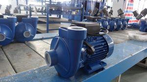 Stern-Marke 2 Zoll-Fuss-Ratenzahlungs-Eisen, das zentrifugale Wasser-Pumpe wirft