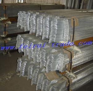 Clôtures de feux de croisement galvanisé à chaud de la palissade (ISO9001)