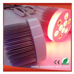 27W RGBW Dimmable di alluminio LED Downlight