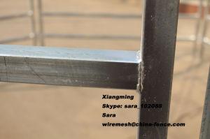 中国の家畜(XMS4)のための高品質によって使用される牛ヤードの畜舎のパネル