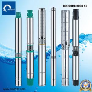 6sr diepe goed Pomp Met duikvermogen, de Pomp van het Bronwater van het Roestvrij staal diep