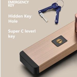 Edelstahl-intelligenter Fingerabdruck-Tastaturblock-Tür-Verschluss
