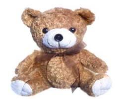 곰 웹 사진기 (WCM-034)