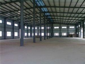 Edificio de acero/almacén profesional de la estructura de acero (SSW-129)