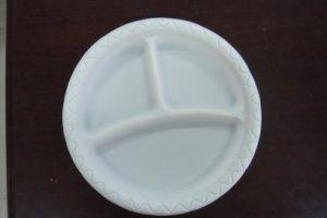 Plaque biodégradable jetable