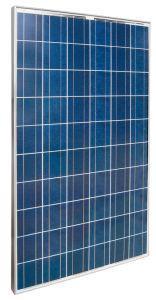 Les panneaux solaires polycristallins (SNS(230)P)
