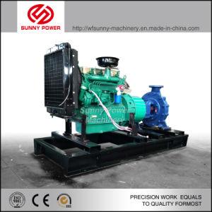 8pulgadas Modelo Diesel de riego de maquinaria agrícola la bomba de agua