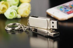 USB 저속한 지팡이 주문 선물 로고 USB 섬광 드라이브 기억 장치 지팡이를 자전하는 금속