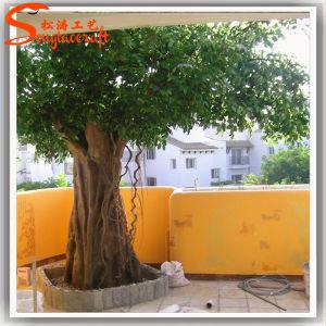 Viver artificial de alta qualidade Ficus Banyan Tree