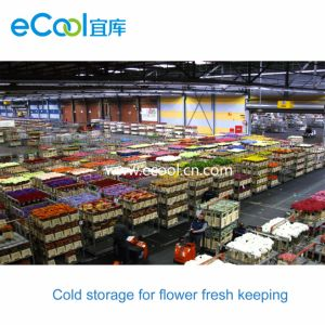Kundenspezifische große Blumen-neue haltene Kaltlagerung
