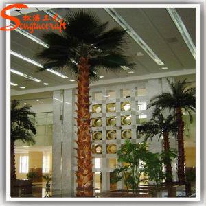 De distinctieve Kunstmatige Palm van het Fiberglas van het Ontwerp