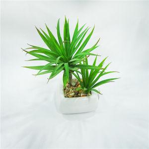 Герметизированное Succulents горячей искусственные смеси в керамикой Pot для таблицы завод