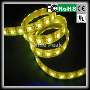 SMD 5050 LED Strip per Outside Building Decorations