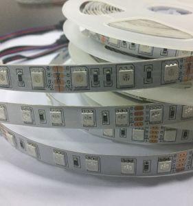 striscia esterna dell'indicatore luminoso del nastro di 5m/Roll LED con DC12V/24V