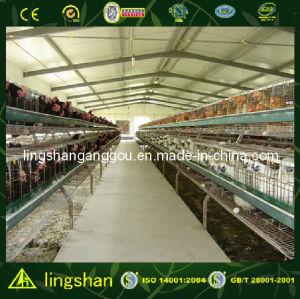 Ферма дома цыпленка стальной структуры Lingshan модульная (LS-S-047)