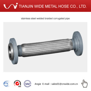 Flange End를 가진 유연한 Corrugated Hose/Pipe