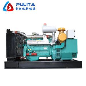 Potência de motor a gás famosos gerador de biomassa 10kw 50kw 100kw Lista de Preços