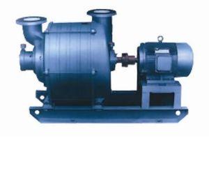 Dehumidifying Vacuum Pump (TLZ)