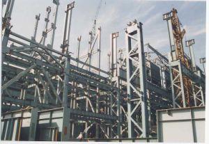 Edificio de la estructura de acero para el almacén (SS-548)