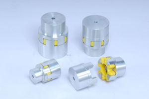 Rotex Type Couplings