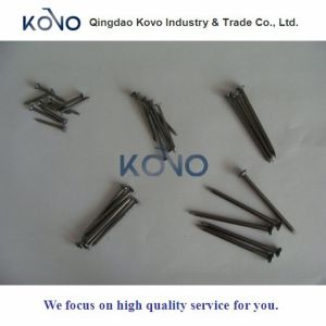 "6 "" Common Iron Wire Nails에 2 """